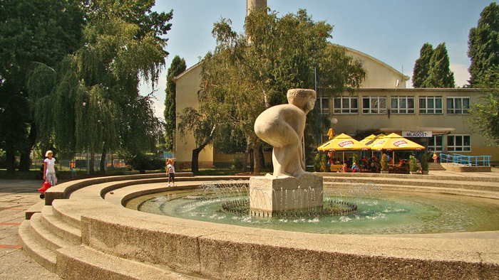 Plivalište u Žajinoj (Daničićevoj) ulici