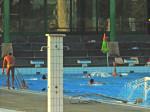 """Otvoreni bazen Plivališta """"Mladost"""" na Savi [GP 2015.]"""