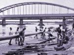 Sportski život na Savi (otprilike na mjestu starog kupališta) oko 1940., dok je još Sava bila Sava [Web]