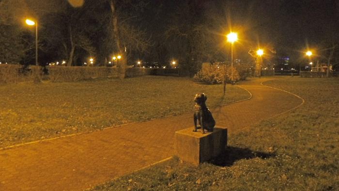 Skulptura psa gluhoslijepe autorice Sanje Fališevac postavljena na Jarunu [GP 2019.]