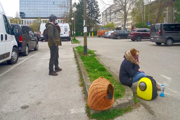 Izlazak stanovnika na zelene površine neposredno nakon potresa (22.3.2020.) - u Trakošćanskoj ulici [Morana 2020.]