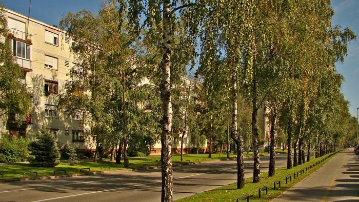 Krapinska ulica