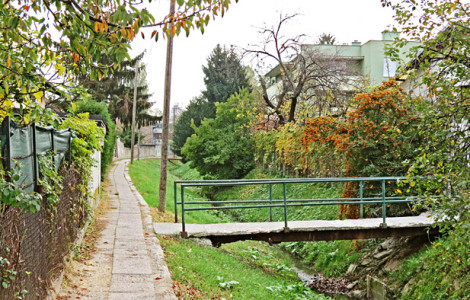 Trešnjevački mostovi