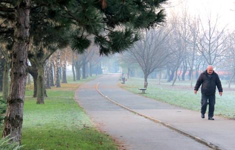 Ulica Hrvatskog sokola