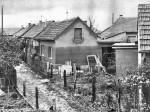 Poplava 1964. - Kad se voda povukla