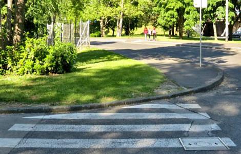 Iz riznice trešnjevačkih trivijalnosti (5): Najbezveznija zebra na Trešnjevci