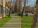 Šetnica ispod drvoreda breza uz Krapinsku ulicu [GP 2016.]