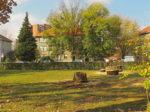 Sječa bolesnih stabala u parku Ciglenica u Zagorskoj ulici [GP 2016.]